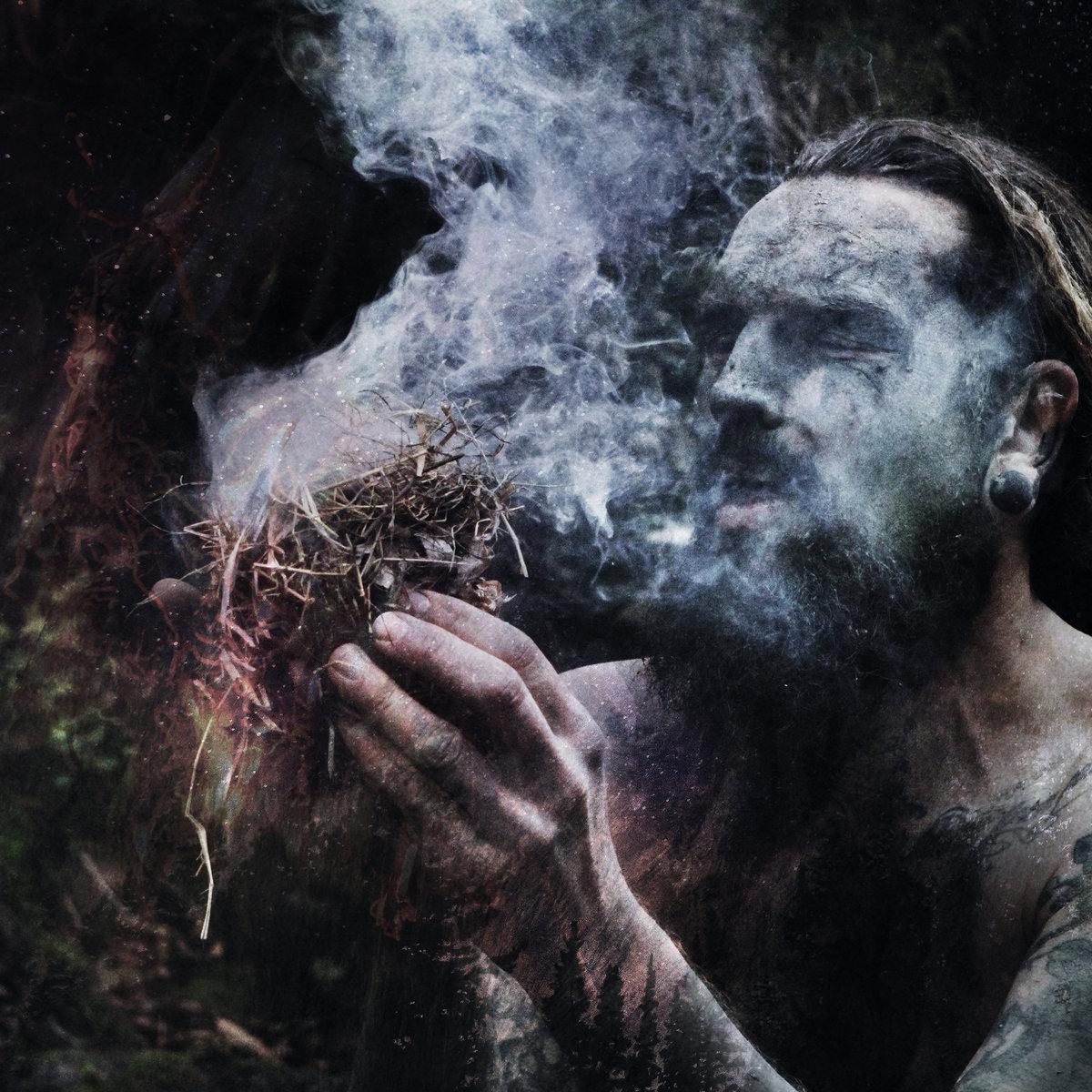 OLD GROWTH : le nouvel album Mossweaver en écoute intégrale