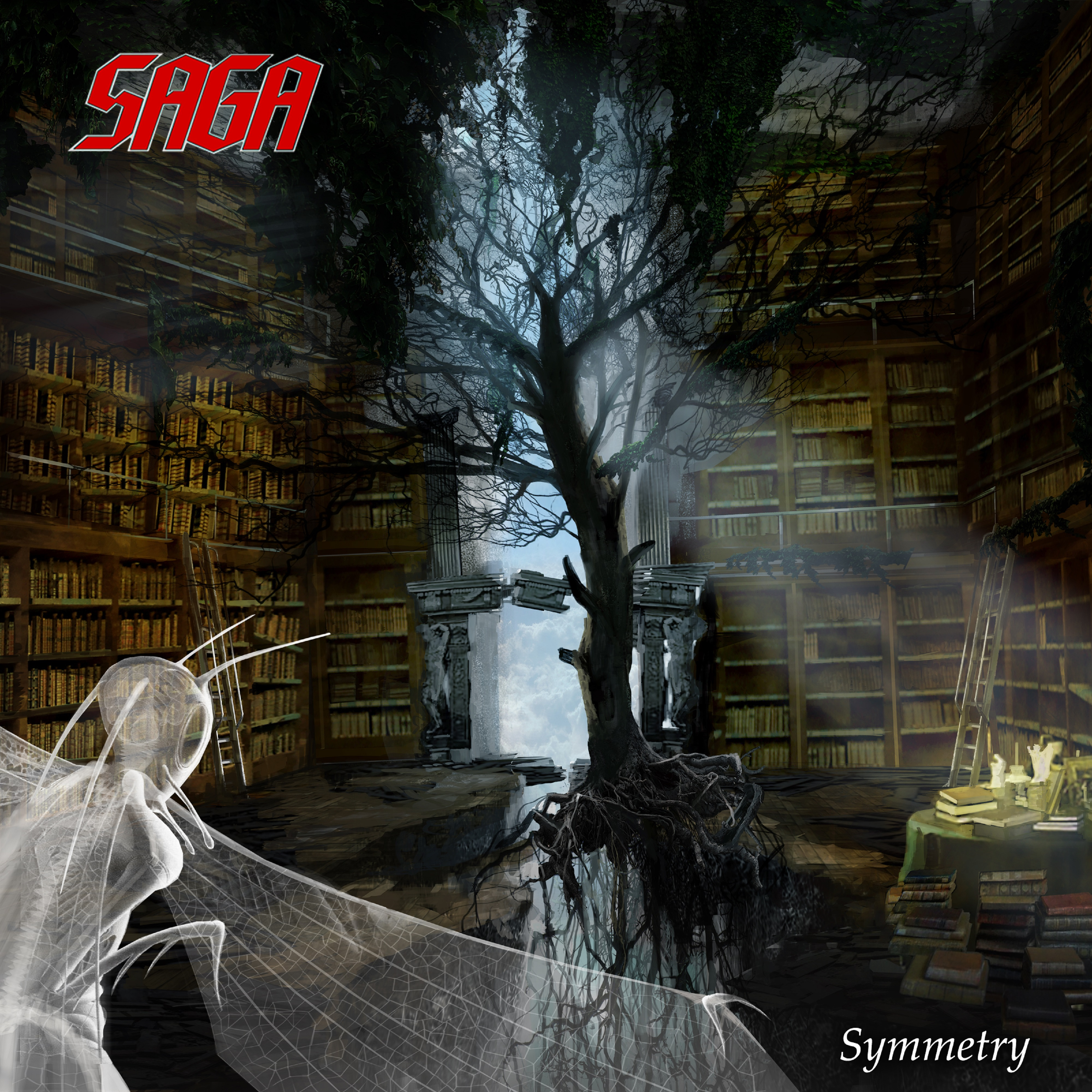 saga symmetry cover artwork