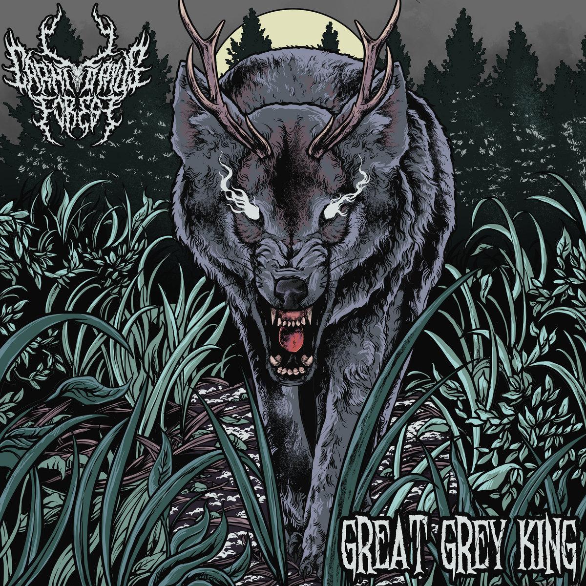 CARNIVOROUS FOREST : les détails du nouvel album Great Grey King