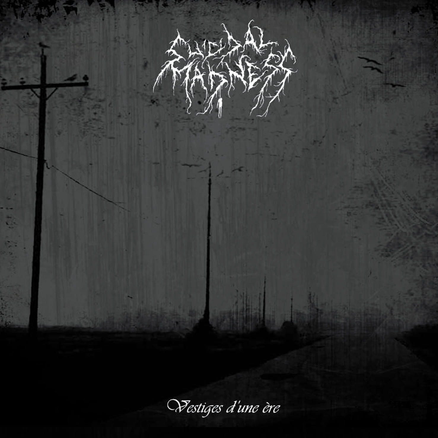 SUICIDAL MADNESS Vestiges d'une ère Album Cover Artwork