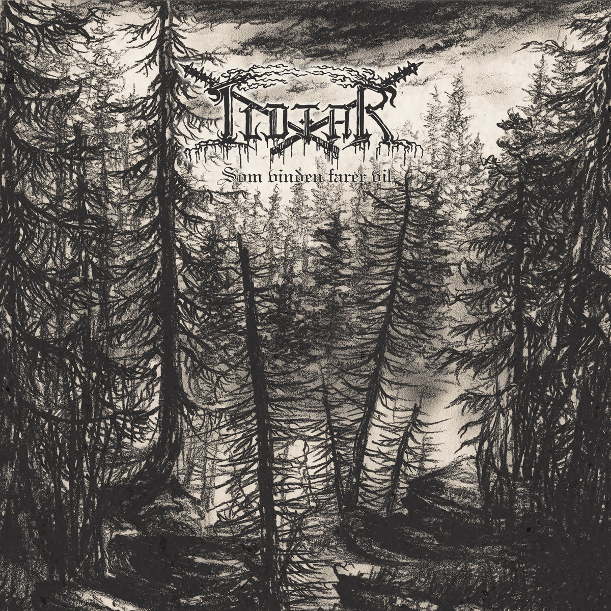 Som vinden farer vil Ildfar Album Cover Artwork