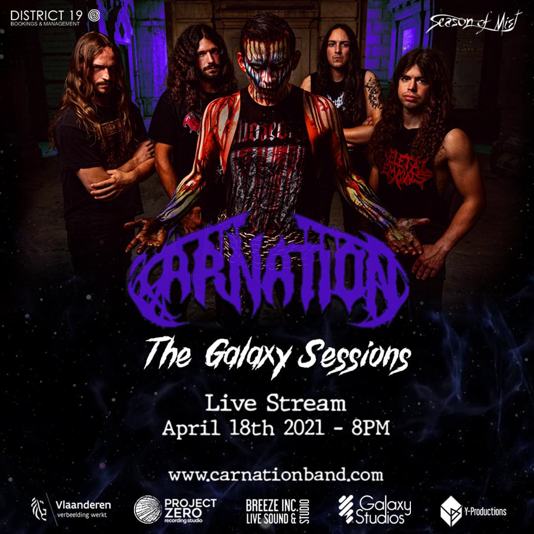 carnation streaming livestream